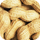 Peanuts from India